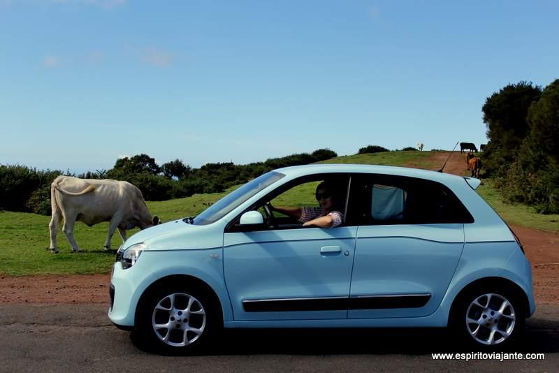 alugar carro na Madeira - viajar na Ilha da Madeira