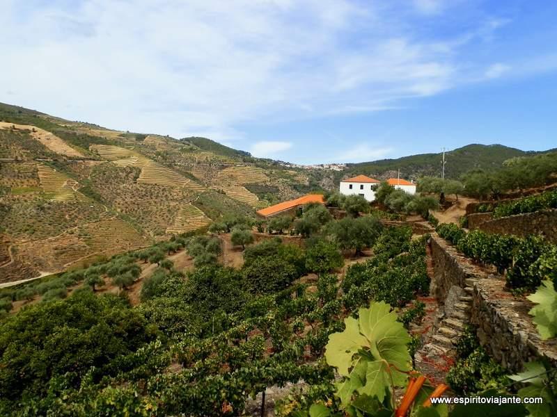 Linha-do-Tua-Douro-Vinhateiro-Portugal