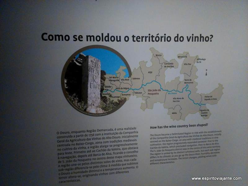 Wine Museum Photos Douro