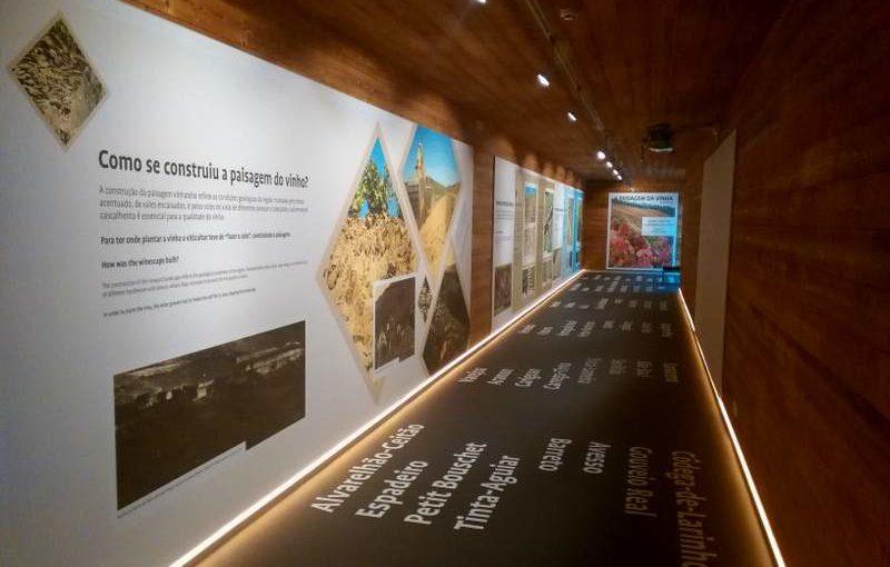 Visitar o Museu do Vinho – S. João da Pesqueira