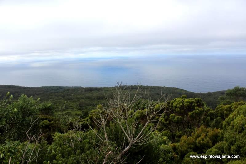 Mata da Serreta Terceira Açores VisitAzores