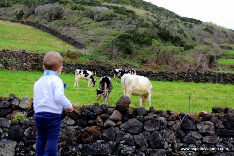Turismo nos Açores com bebés
