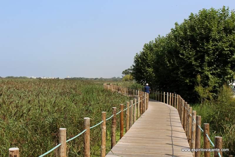 Fotos Costa Verde Portugal