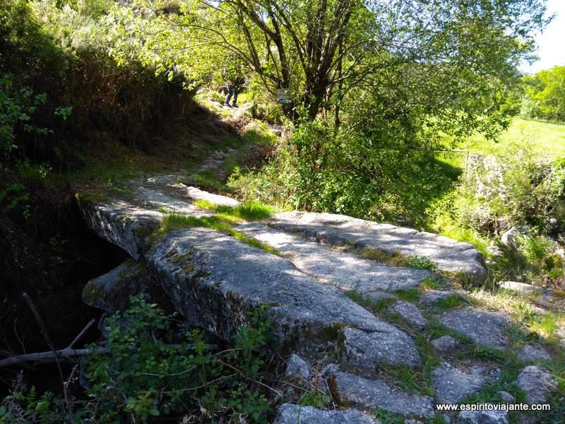 Fotos natureza Serra do Gerês