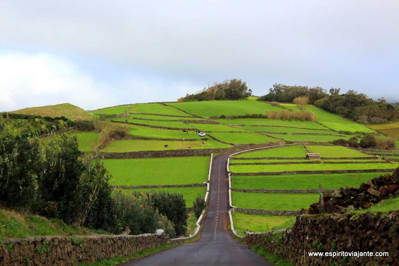 Conduzir ilha Terceira