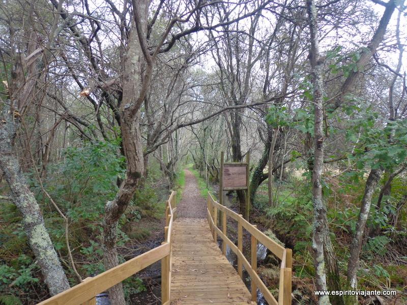 Lagoas de Bertiandos – Ponte de Lima