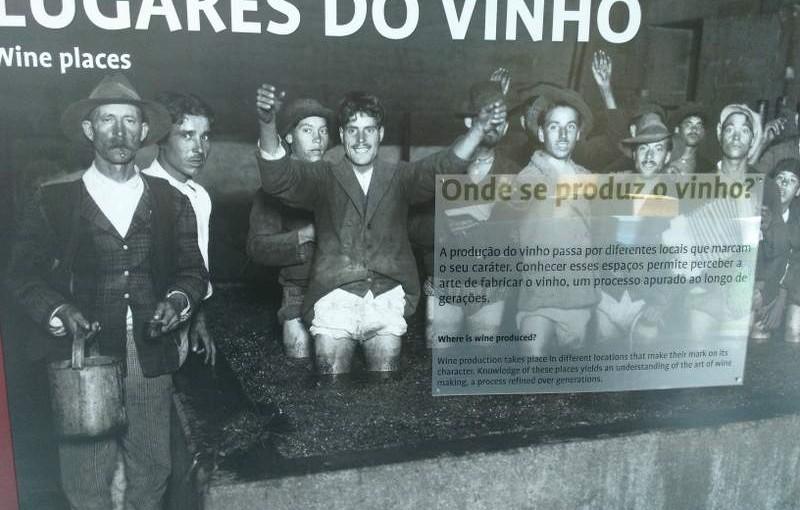 Visitar o Museu do Vinho – São João da Pesqueira