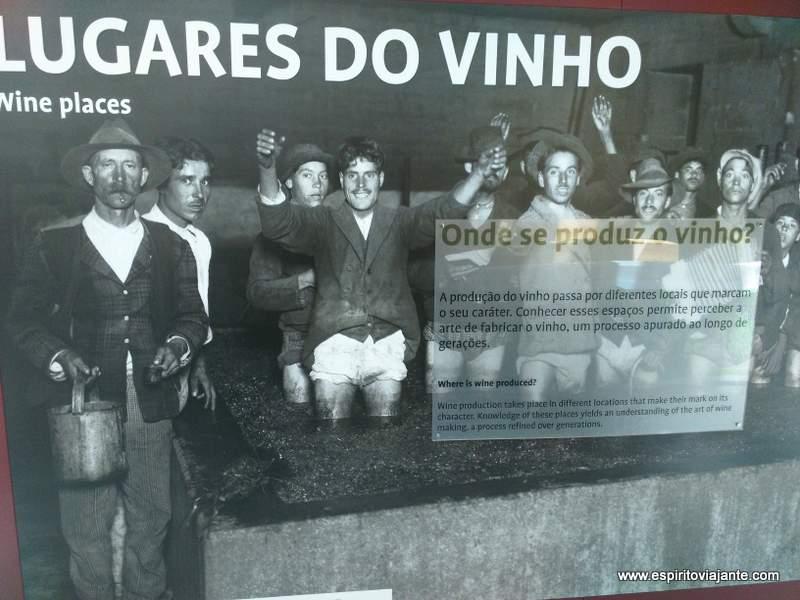 Wine Museum Photo Tourism