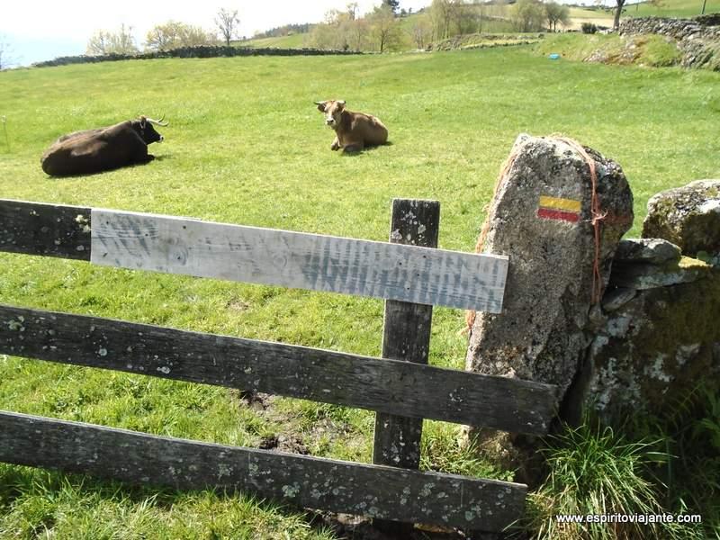 Paisagem rural Portugal Rural Landscape