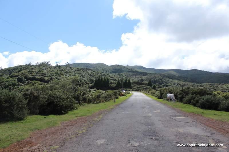 Fotos ilha da Madeira