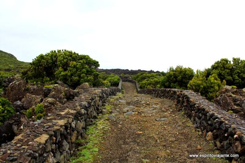 Reservas naturais Açores