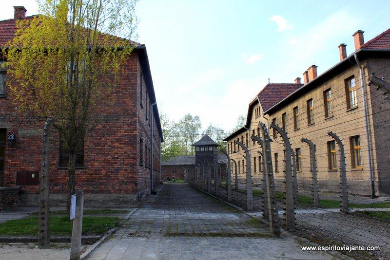 Auschwitz-Birkenau Campos de Concentração